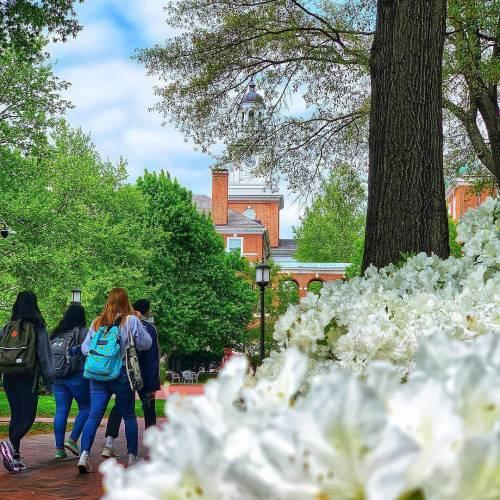 Campus blooms