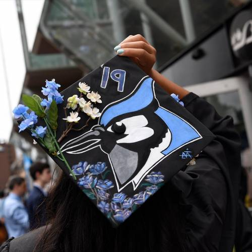 A 2019 graduation cap with a painted blue jay