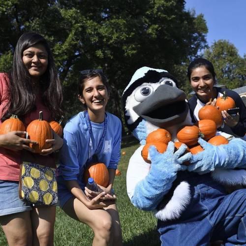 Three students and university mascot hold small pumpkins