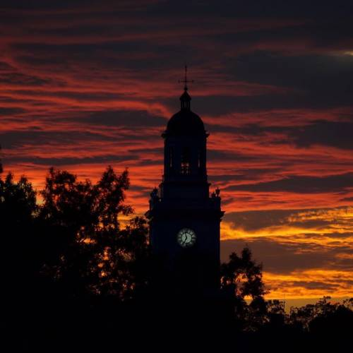 Colorful sunset silhouettes Gilman Hall clock tower